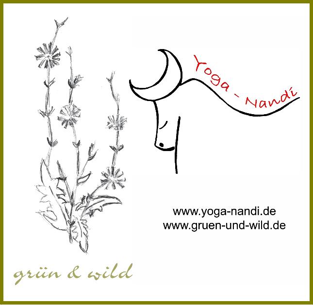 Logo Kraut & Yoga